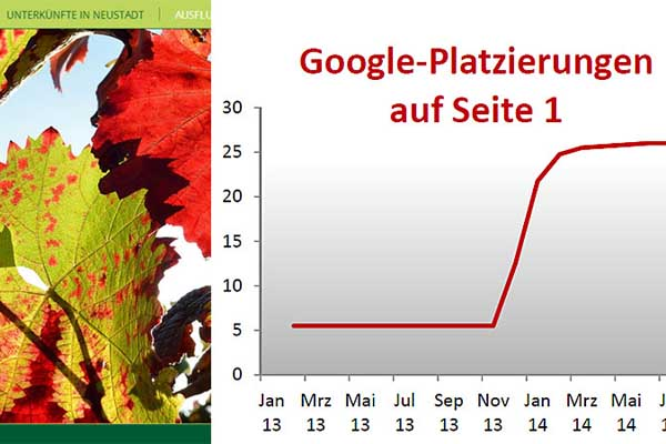 Suchmaschinenoptimierung für die IFG Neustadt